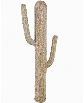 Figure cactus natural fiber
