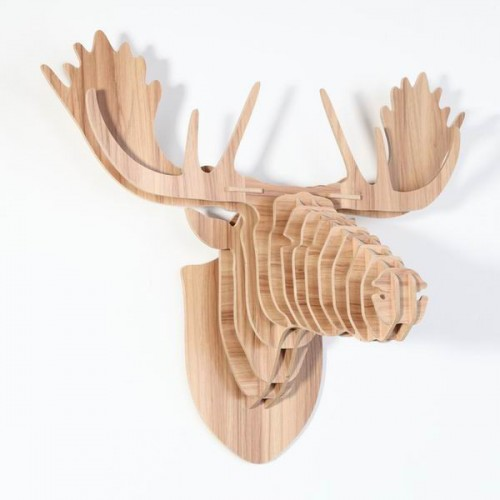 Trophy Moose Head