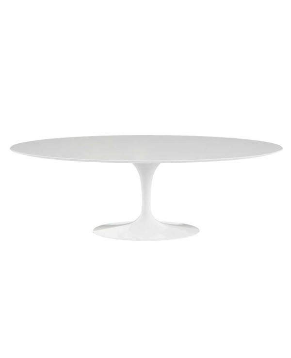 Mesa de comedor de fibra de vidrio oval