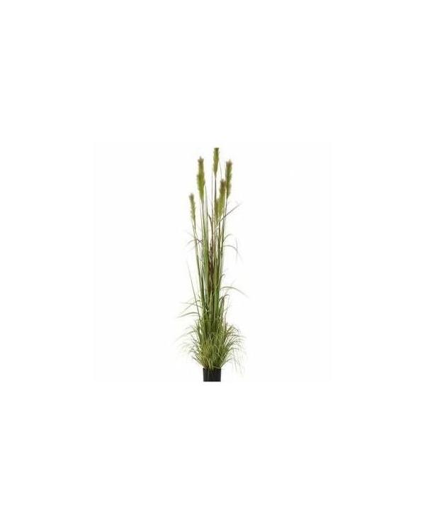 Plantas artificial