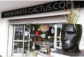 White Cactus