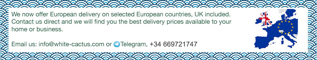 European Delivery Available